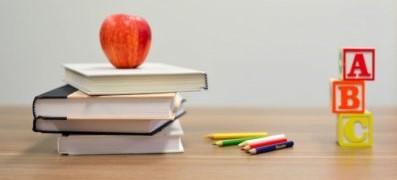 Contenus d'enseignement : politiques, supports et usages